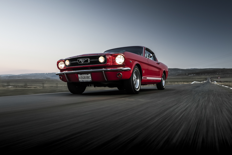 Mustang-0008